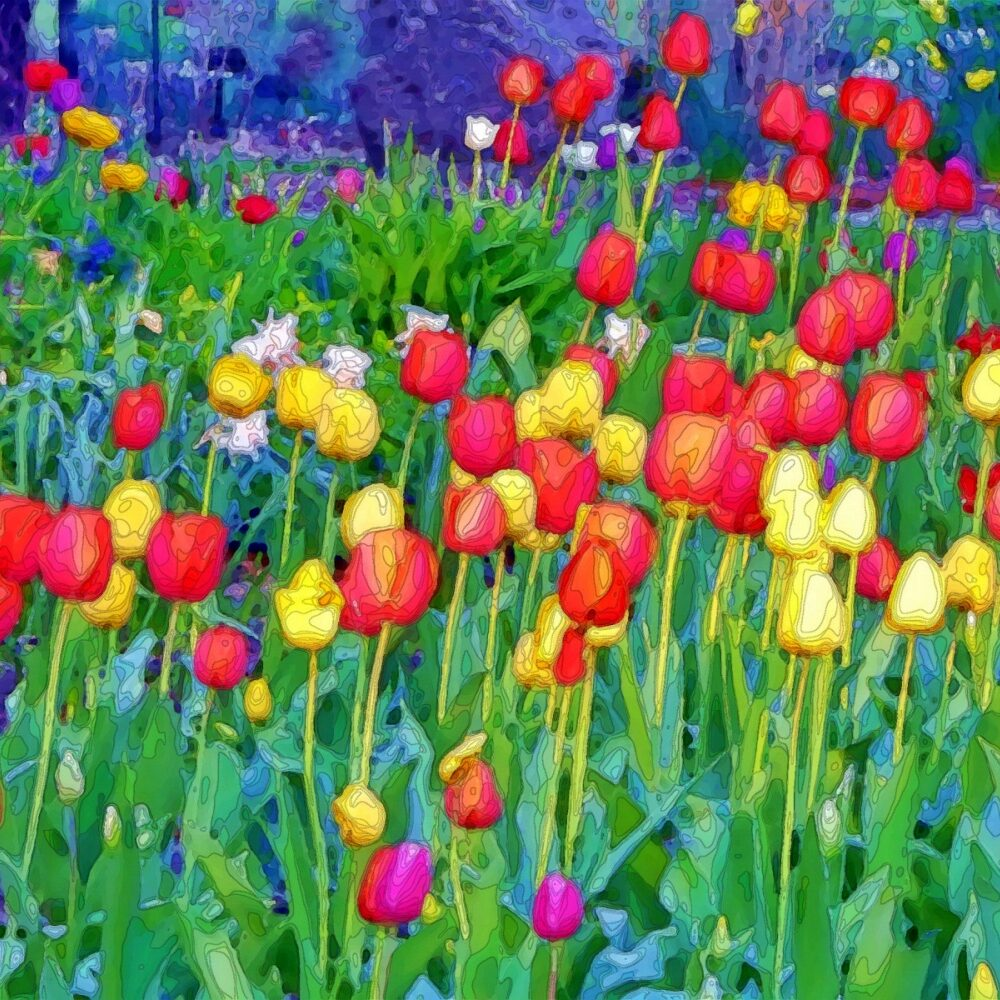 Health Savings Account. Coloring painting of field full of tulips